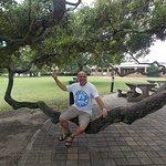 Columpiando con una rama