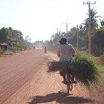Countryside bike tour in Siem Reap.
