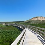 The floating boardwalk over the marsh, with sand dunes on either side, to the beach