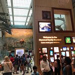 Photo of Smithsonian National Museum of Natural History