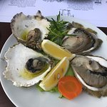 Fresh Oysters, catch of the day, raw and grilled, yummy!!!!