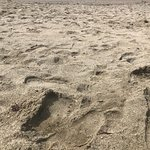 صورة فوتوغرافية لـ Playa de Levante