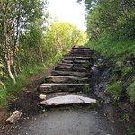 Foto de Mount Ronvik