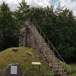 Parc Naturel des Hautes Fagnes의 사진