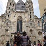 Stephansdom Foto