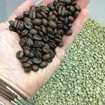 Billede af Ojai Coffee Roasting Co.