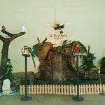 Bild från Fågelparken i Kuala Lumpur