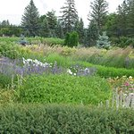 Bild från International Peace Garden