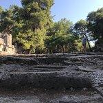 Фотография Phaselis Antique City