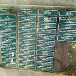 "Some of the names of the ""Hemingway cats"" buried on the grounds. All are named after celebritiie"