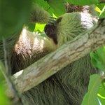 Foto de Manuel Antonio National Park
