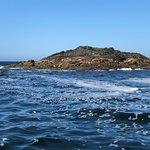 Photo of Cameron Ocean Adventures