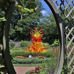 Chihuly glass in garden.