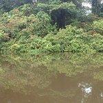 Photo of Tortuguero National Park