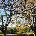 The Tamar Valley의 사진