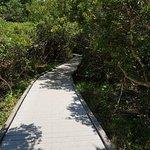 Photo of Huntington Beach State Park