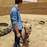 Foto di Tours in Marrakech