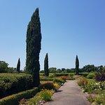 Foto de Kendall-Jackson Wine Estate & Gardens