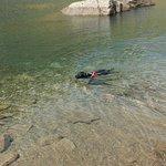 Pup's first swim!