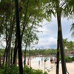 Foto de Typhoon Lagoon