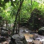 Foto de Kathu Waterfall