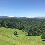Biltmore View from Outside Terrace
