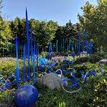 The blue glass garden