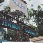 Photo of Disney's Typhoon Lagoon Water Park