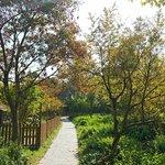 Foto de Gucun Garden