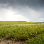 Custer State Park Photo