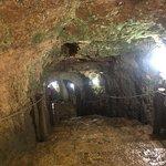 イキル自然考古学公園 (セノーテ・イキル)の写真