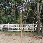 Photo of Toninhas Beach
