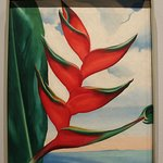 Ginger used for advertizing - Heliconia, Crab's Claw Ginger, 1939 Oil on canvas