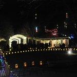 Christmas Season Light Display