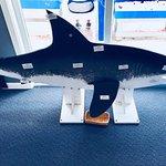 Chatham Shark Center照片