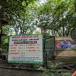 Bilde fra Baneshwar Temple