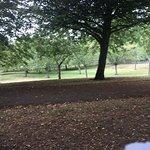 Foto de War Memorial Gardens