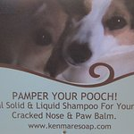 Pamper Your Pooch! Your four legged friends are welcome in our shop