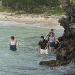 Jungle phi phi trek Antrek thailand. magic way