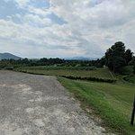 Round Peak Vineyard의 사진