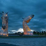 One of the coloured Kelpies at night