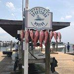 Bigger fish are 30+ inches. Great fun bringing them in!!!