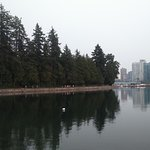 Stanley Park and Vancouver's modern city