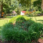 Foto de Poplar Grove Plantation