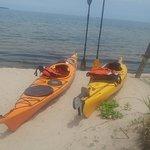 Kayaks/Trailer Stolen