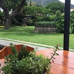 Photo of La Veladora Restaurant & Bar