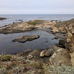 Foto de Point Lobos