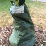 A tree watering bag