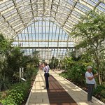 Inside the Temperate Glass House