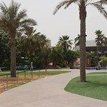 Ảnh về Dubai Marine Beach Resort & Spa